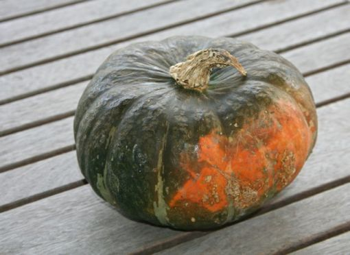 kabocha squash (about 3 pounds each), halved and seeded 1/2 stick ...